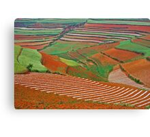 Red Land 07 Canvas Print