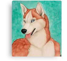 Red Husky Canvas Print