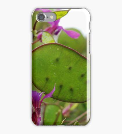 seeds of nature iPhone Case/Skin