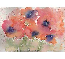 Fluid Poppies Photographic Print