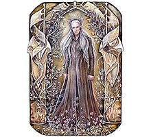 Welcome to Mirkwood Photographic Print
