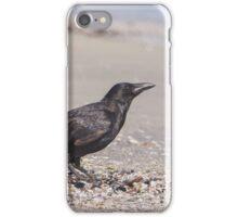 Beachcomber Crow iPhone Case/Skin