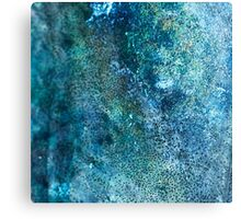 Abstract blue scales Canvas Print