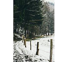 Winter Rural Pathway Photographic Print