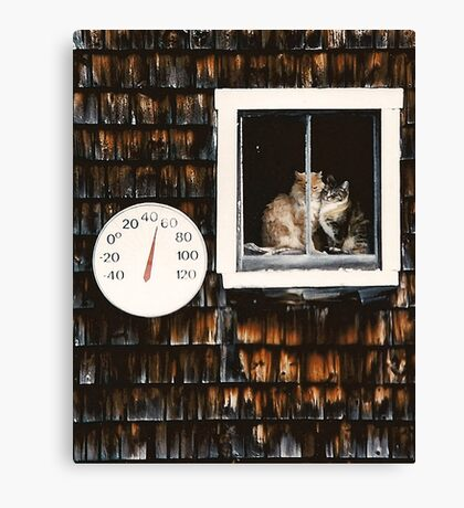 Cats in the Barn Window Canvas Print