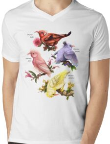 Oricorio Mens V-Neck T-Shirt