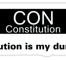My Dump Stat - Constitution Sticker