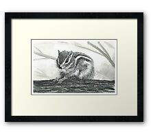Chipmunk on a Log - www.jbjon.com Framed Print