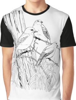 Fence Committee Coloring Project.  Graphic T-Shirt