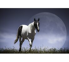 Lunar Horse [Prints, iPhone/iPod cases, Clothing] Photographic Print