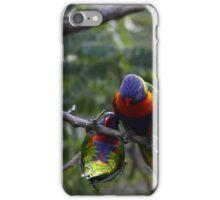 Rainbow Lorikeets iPhone Case/Skin
