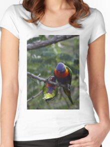 Rainbow Lorikeets Women's Fitted Scoop T-Shirt