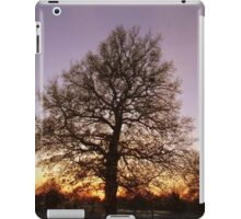 Winter Tree Scene iPad Case/Skin