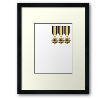 The UNSC Perfectionist Framed Print