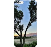 Tree Shadows iPhone Case/Skin
