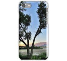 Tree Shadows iPhone Case/Skin
