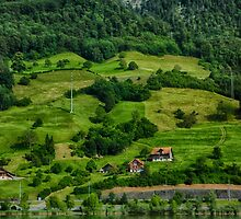 Swiss Summer Countryside by Adam Northam