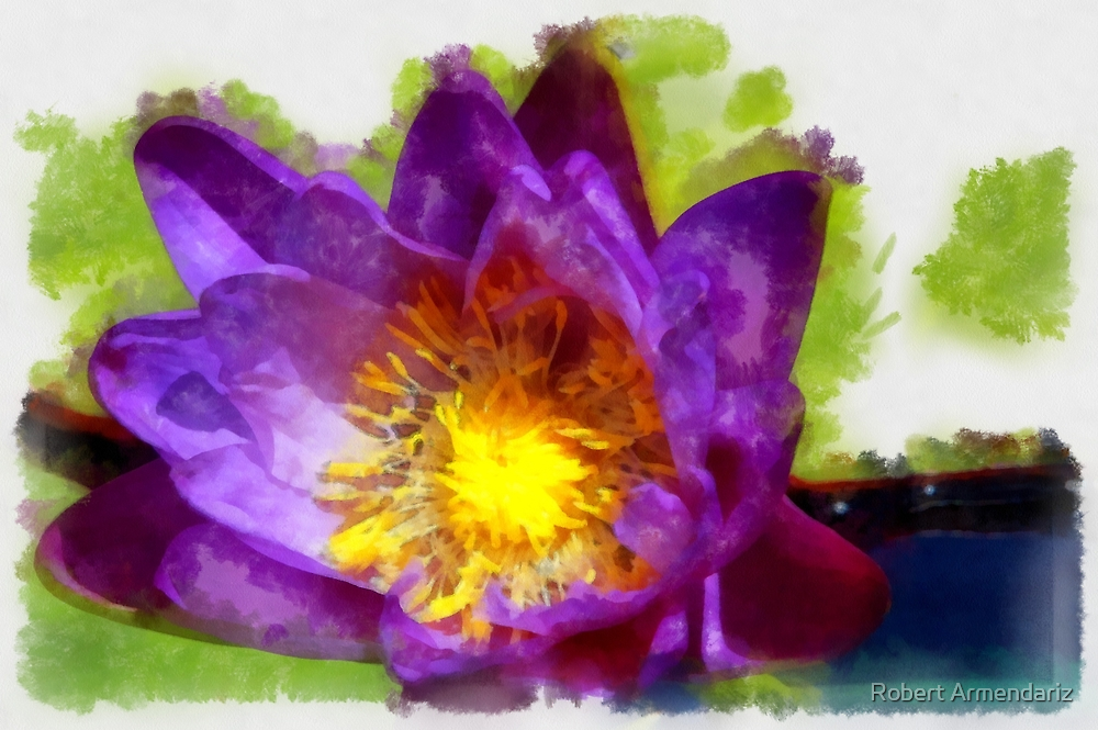 Purple Water Lily Lounging about in DAP Aquarell  by Robert Armendariz