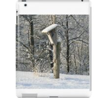 Unoccupied Blue bird houses are unhappy homes iPad Case/Skin