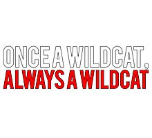 Once a Wildcat, Always a Wildcat Photographic Print