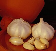 Garlic by Robert Armendariz