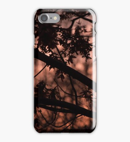 Whirling Sunset iPhone Case/Skin