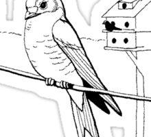 Condorminium Birds.  Color Project.  Sticker