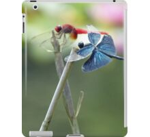 The Red Baron and the Blue Max iPad Case/Skin