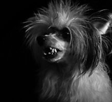 Smiling Chinese Crested Dog by Karnoffel