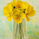 Yellow Pansies In Vase  by Sandra Foster