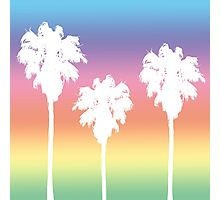 Rainbow Palm Tree Sunset Photographic Print