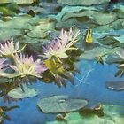 Water Lilies in Monet with Texture by Robert Armendariz