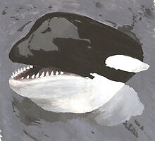 Is it an Orca or a Killer Whale? by Equinspire