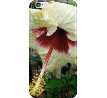 DISTINGUISHED iPhone Case/Skin