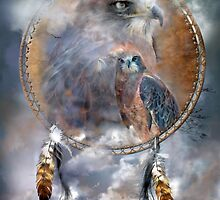Dream Catcher - Spirit Of The Hawk by Carol  Cavalaris