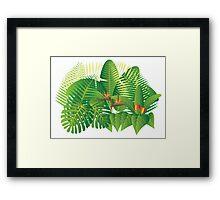 Tropical Jungle Plants Illustration Framed Print