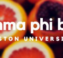 Gamma Phi Beta Boston University Sticker