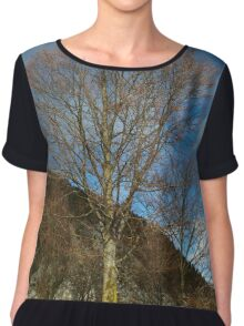 Beech tree on mountain Chiffon Top