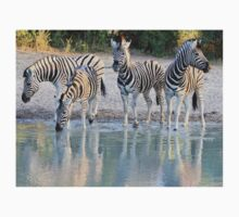 Zebra Reflection - Beautiful African Wildlife One Piece - Short Sleeve