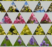 Flora Patchwork: Triangles by floranancy