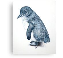 Little Penguin 3 Canvas Print