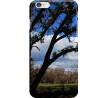 Regrowth after the Bush-fires iPhone Case/Skin