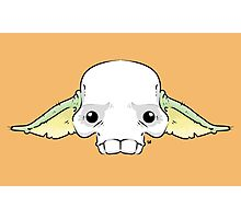 Yoda Skull Photographic Print