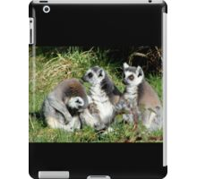 Not more visitors! iPad Case/Skin
