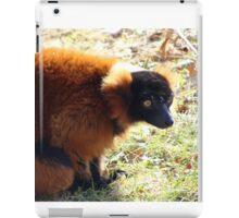 Red lemur iPad Case/Skin