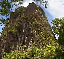 Chickenshit Mountain - Pohnpei, Micronesia by Alex Zuccarelli