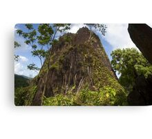 Chickenshit Mountain - Pohnpei, Micronesia Canvas Print