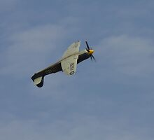 Hawker Sea Fury at the top of the loop by wjohnd