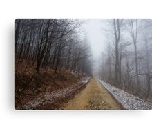 Foggy road in the forest Metal Print