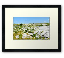 The Burren National Park Co. Clare; Ireland Framed Print